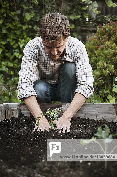 Man planting in backyard