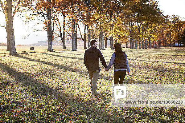 Rear view of couple holding hands while walking on field