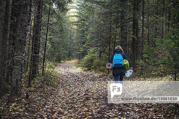 Rückansicht einer Wanderin mit Rucksäcken  die auf einem Feldweg im Wald unterwegs ist