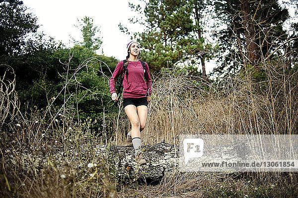 Wanderin beim Waldspaziergang