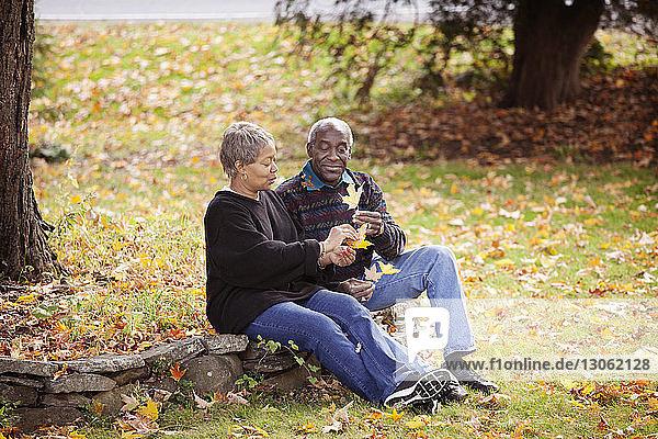 Glückliche Familie sitzt auf einem Felsen im Wald