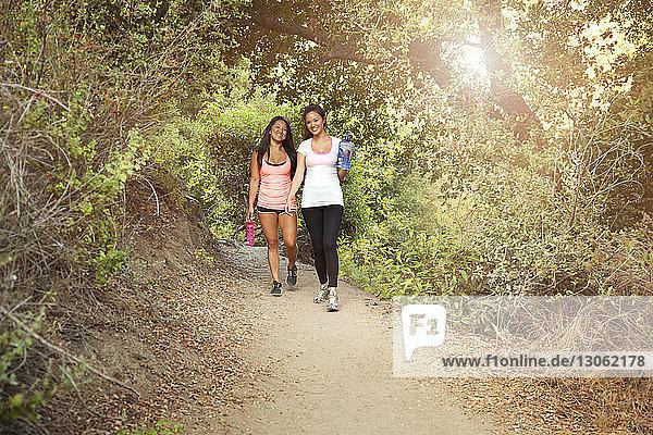 Freunde wandern auf einem Waldweg