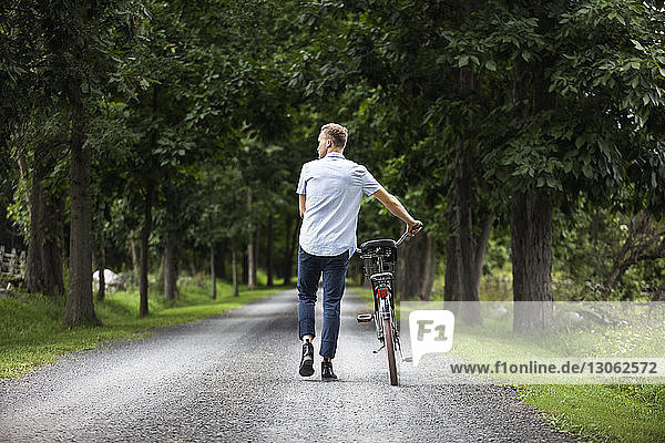 Rear view of man walking on road with bicycle in forest