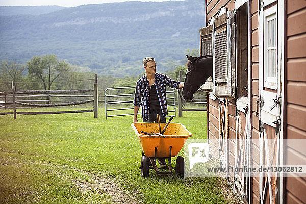 Rancher streichelt Pferd beim Schieben der Schubkarre im Bauernhof