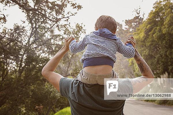 Rückansicht eines Vaters  der seinen Sohn auf den Schultern trägt  im Wald