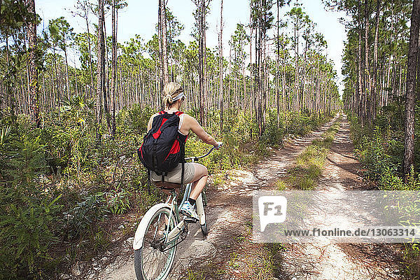 Rear view of hiker cycling on pathway amidst trees in forest