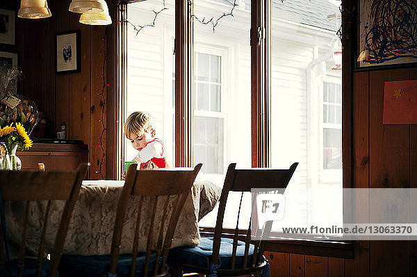 Boy at dining table against window at home