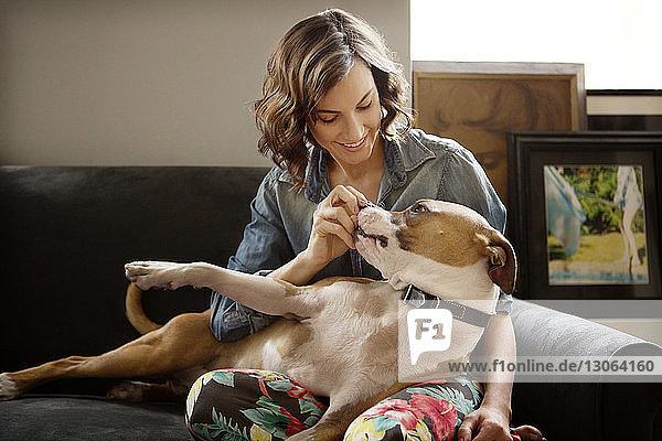 Frau spielt zu Hause mit Hund