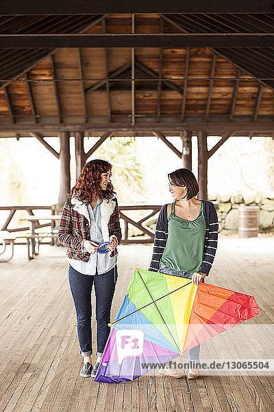 Freunde mit Drachen unterhalten sich  während sie im Pavillon auf dem Bodenbrett stehen