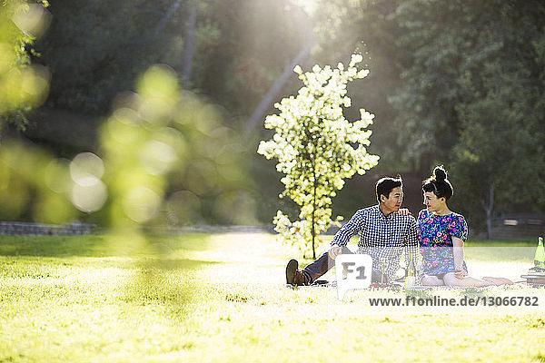 Romantisches Paar sitzt auf Grasfeld