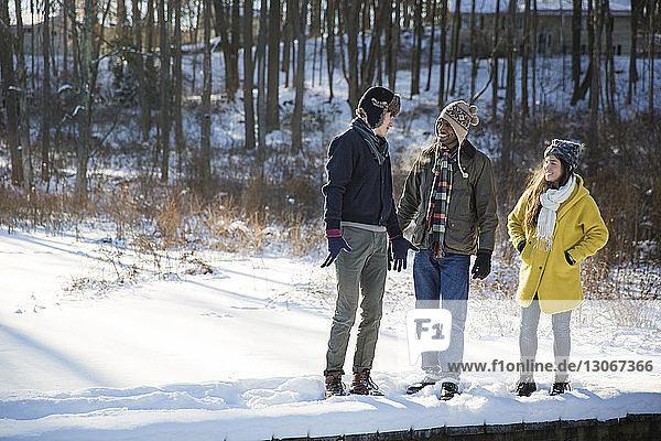 Freunde unterhalten sich  während sie auf einem schneebedeckten Feld stehen