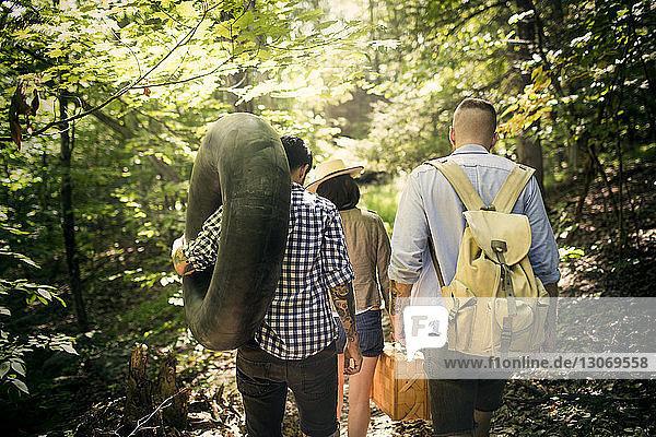 Rückansicht von Freunden beim Waldspaziergang