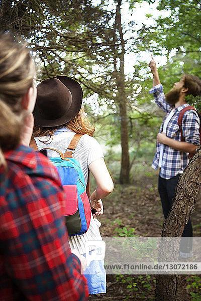 Mann zeigt Freunden einen Baum  während er im Wald steht