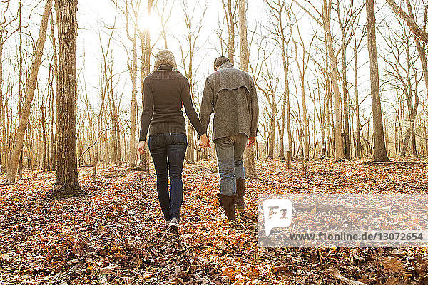 Rear view of couple holding hands while walking in forest
