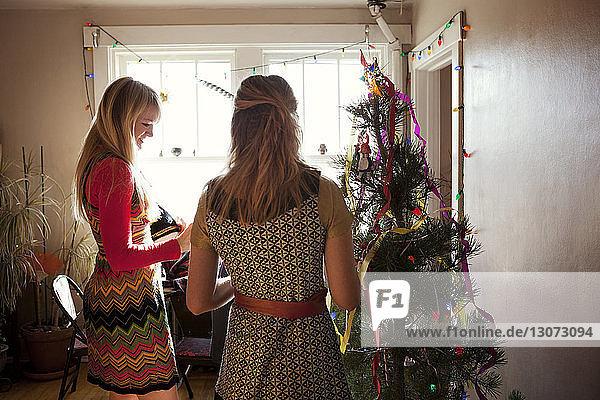 Geschwister schmücken den Weihnachtsbaum zu Hause