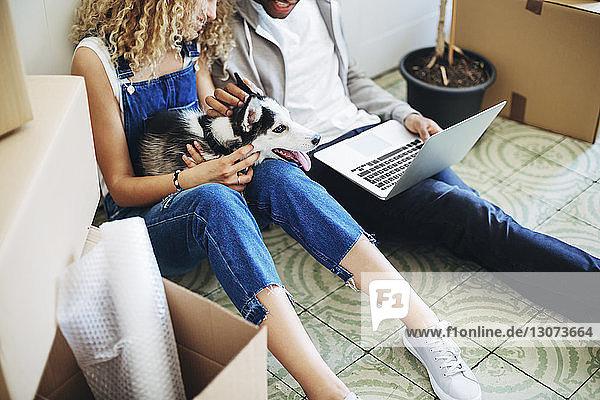 Hochwinkelansicht eines Paares mit Hund mit Laptop-Computer im neuen Haus