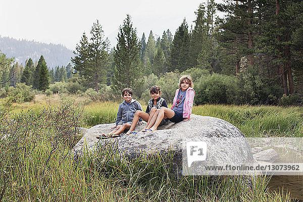 Porträt von Geschwistern  die auf einem Felsen auf einem Grasfeld vor Bäumen sitzen