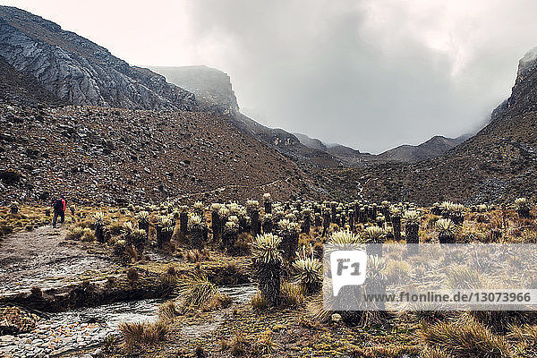 Wanderer im Bergtal