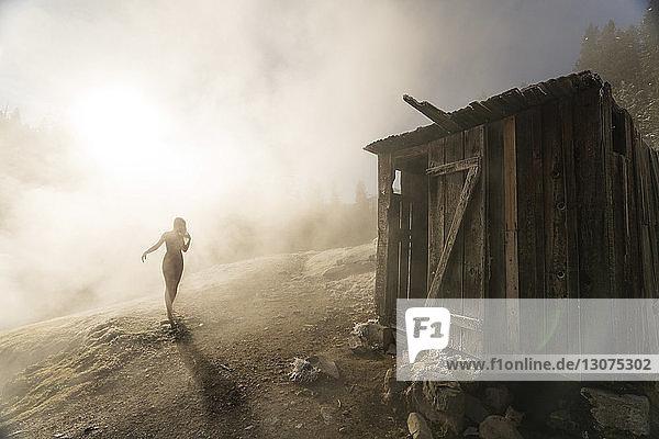 Scherenschnittfrau geht bei nebligem Wetter auf eine alte Holzhütte am Berg zu