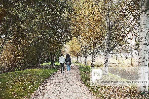 Rückansicht eines Paares  das im Herbst auf einem Fußweg im Park spazieren geht