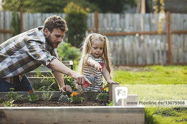 Vater und Tochter zeigen auf Pflanzen  die im Hochbeet wachsen