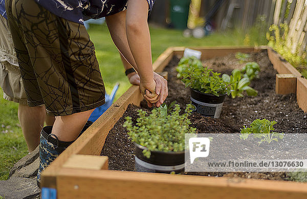 Boy digging soil in raised-bed gardening at backyard