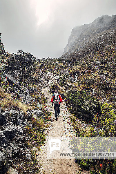 Wanderer auf Bergweg