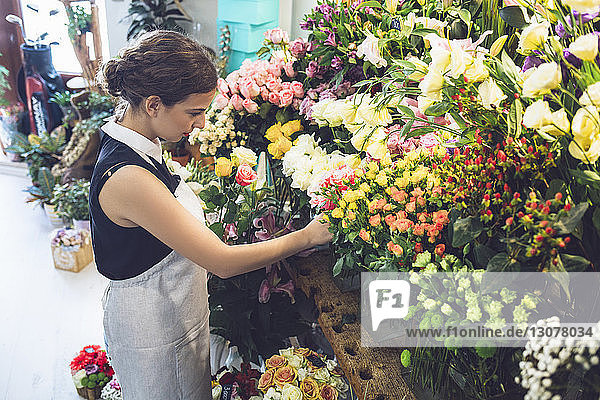 Side view of female owner arranging roses at shop