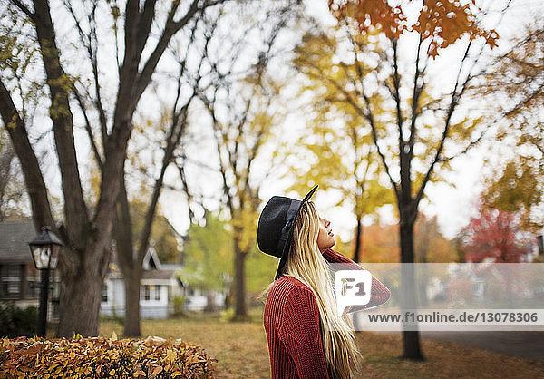 Seitenansicht einer Frau  die nach oben schaut  während sie auf dem Feld an Bäumen steht