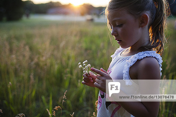 Girl looking at flowers in farm during sunset