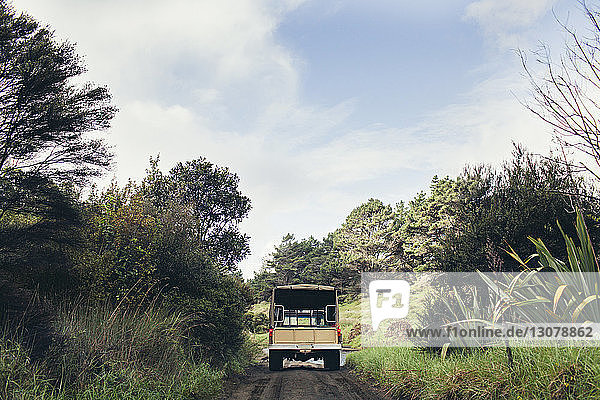 Lastwagen fährt auf der Straße zwischen Bäumen gegen den Himmel