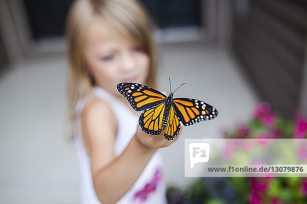 Close-up of girl holding butterfly