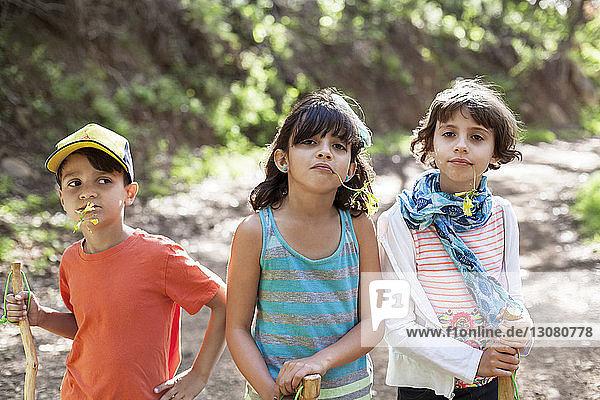 Porträt von selbstbewussten Geschwistern  die im Wald Pflanzen im Mund tragen