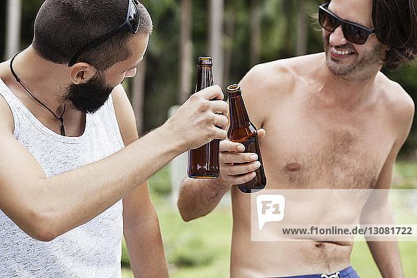 Glückliche männliche Freunde stoßen auf Bierflaschen an