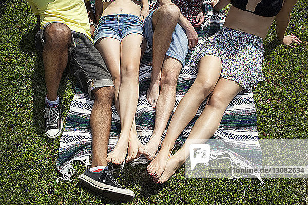 Low section of friends sitting on picnic blanket