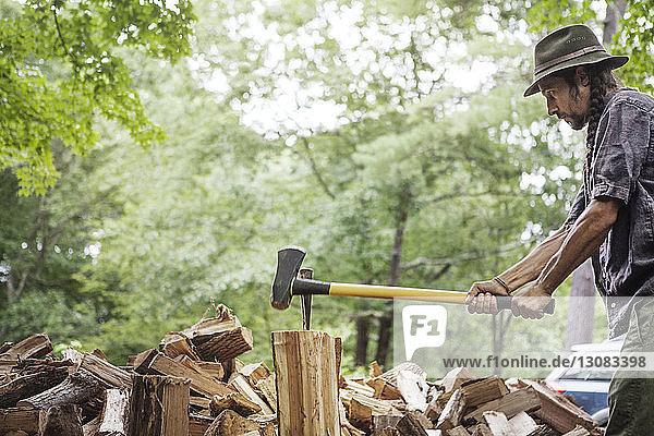Mann schneidet Brennholz im Wald