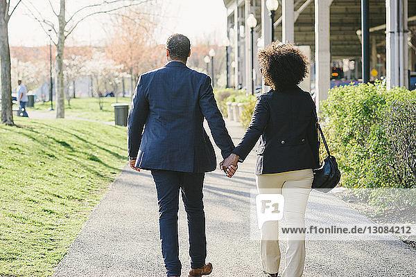 Rückansicht eines Paares  das sich an den Händen hält und auf einem Fußweg im Park geht