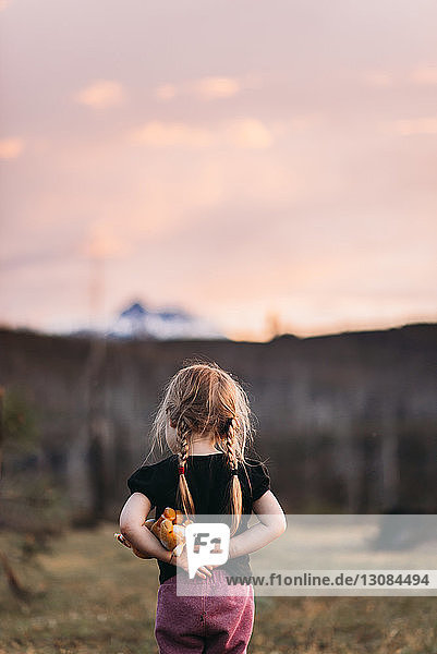 Rear view of girl with stuffed toy standing on field during dusk