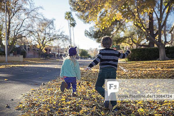 Rückansicht der Geschwister  die auf einem mit Herbstlaub bedeckten Feld laufen