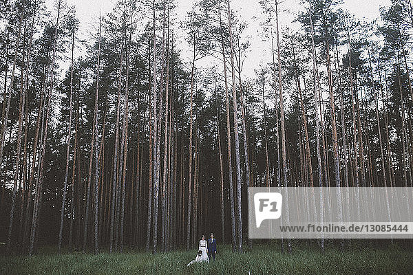 Couple standing on grassy field in forest