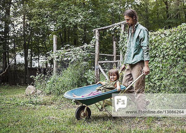 Man pushing girl sitting in wheelbarrow