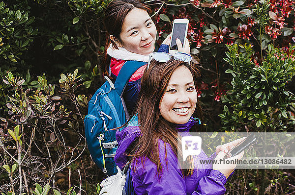 Portrait of female friends photographing trees with mobile phones