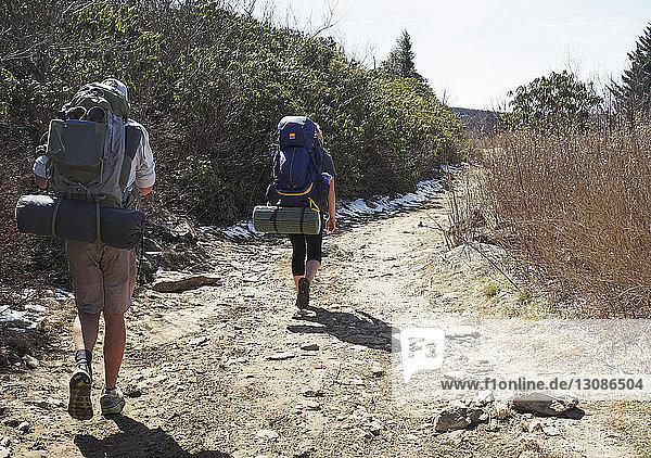 Rückansicht von Wanderern mit Rucksäcken auf dem Feldweg im Pisgah National Forest