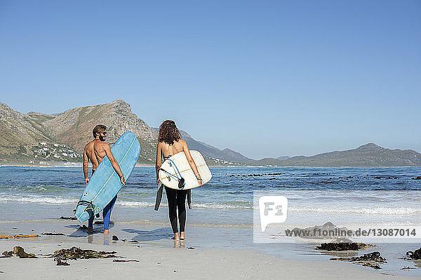 Rückansicht von Freunden mit Surfbrett beim Strandspaziergang am sonnigen Tag