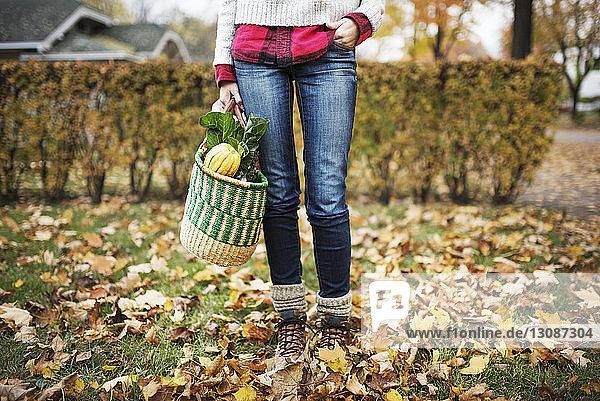 Niedriger Abschnitt einer Frau  die eine Einkaufstasche hält und auf einem unordentlichen Feld steht