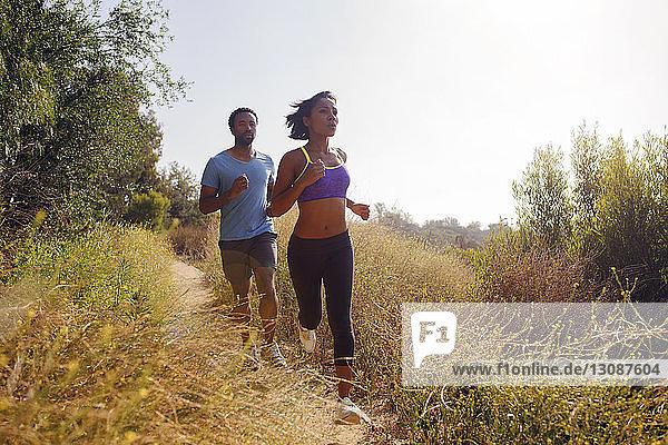 Mann und Frau joggen auf einem Grasfeld