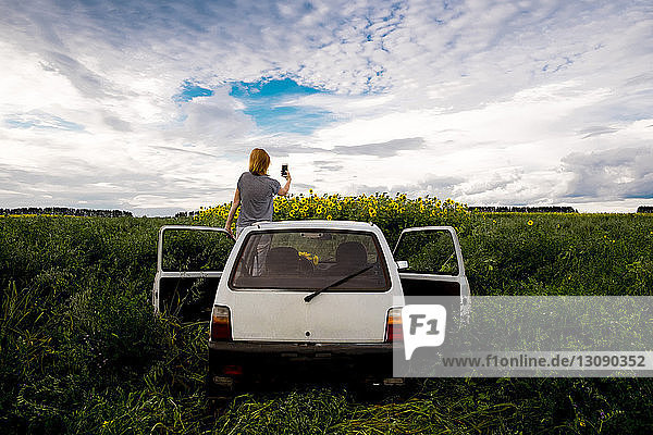 Rückansicht einer Frau  die Sonnenblumen auf dem Feld fotografiert  während sie im Auto vor bewölktem Himmel steht