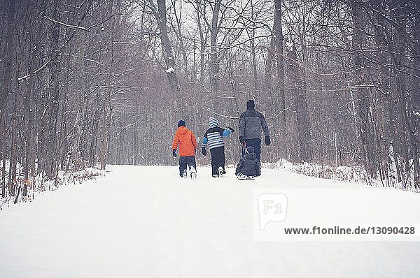 Rückansicht von Vater und Sohn beim Spaziergang auf verschneitem Feld inmitten kahler Bäume