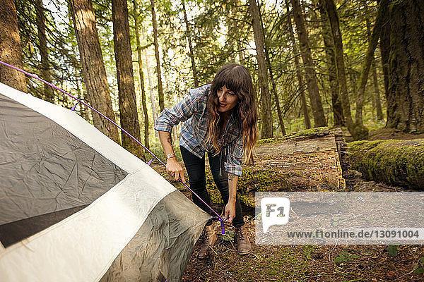 Frau bereitet Zelt im Wald vor