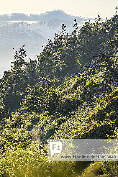 High angle view of woman walking on trail during sunny day